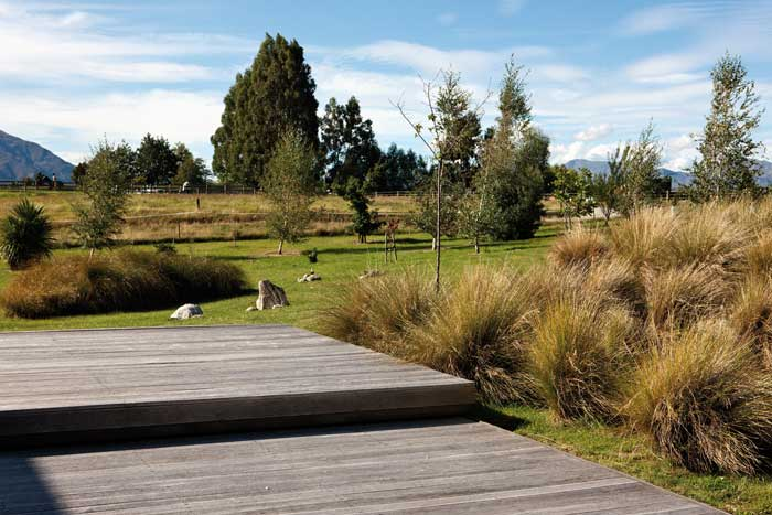 Secrets of a dry garden by megan wraight the design guide for Garden design nz