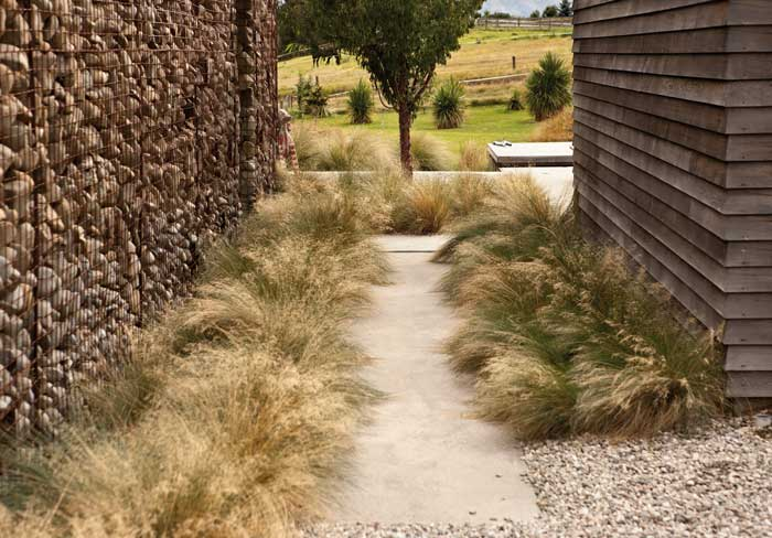Secrets of a dry garden by megan wraight the design guide for Native garden designs nz