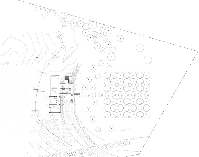 Secrets Of A Dry Garden By Megan Wraight The Design Guide